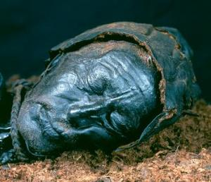 Tollund Man Bog body