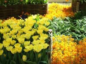 bellagio spring