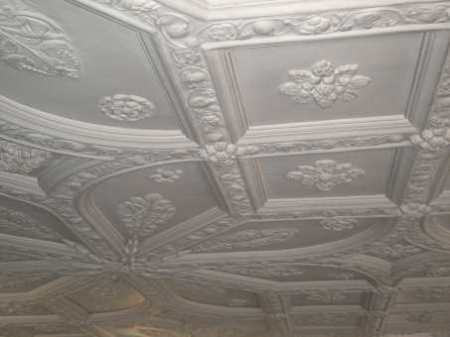bessie surtees ceiling