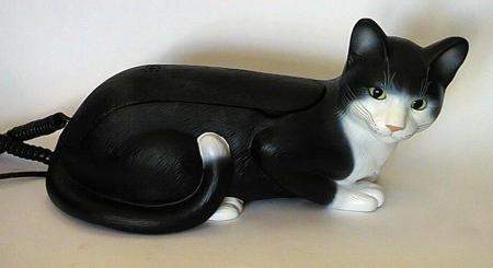 Cat telephone