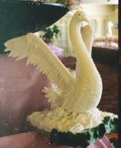 butter swan