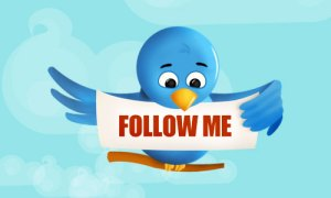 the twitter bird says follow me...but what if they don't lol!