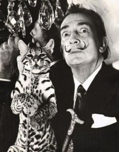 Dali and his  wild cat Babou